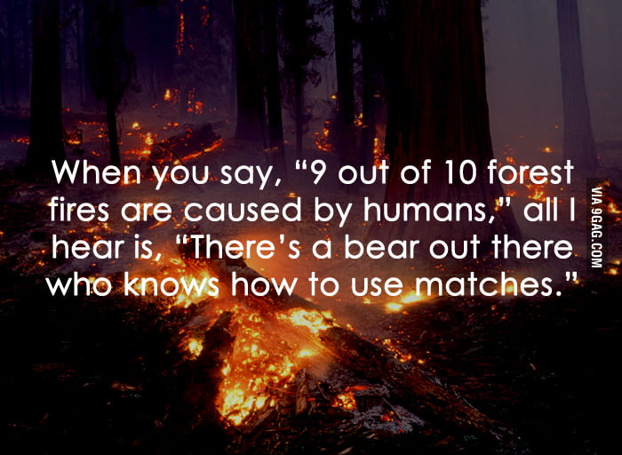 9 out of 10 forest fires are caused by humans.