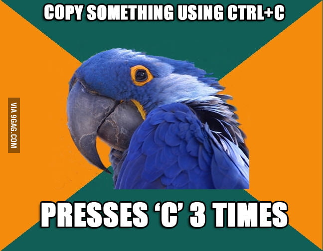 Everytime when using ctrl+c