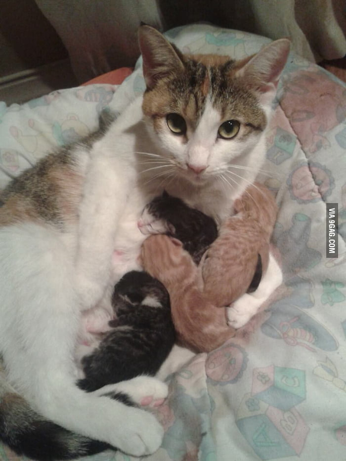 A new mother