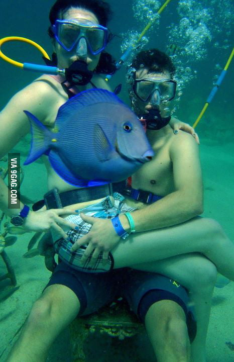 Photobomb lvl: FISH