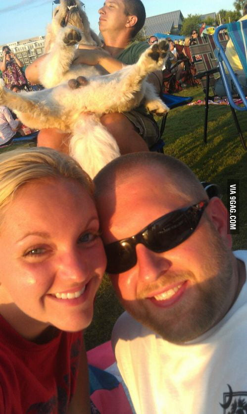 Photobomb Level: Dogballs