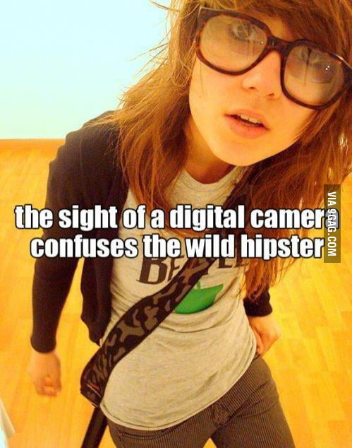 Another wild hipster appears