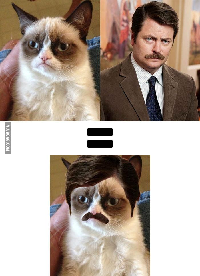 Grumpy Cat + Ron Swanson
