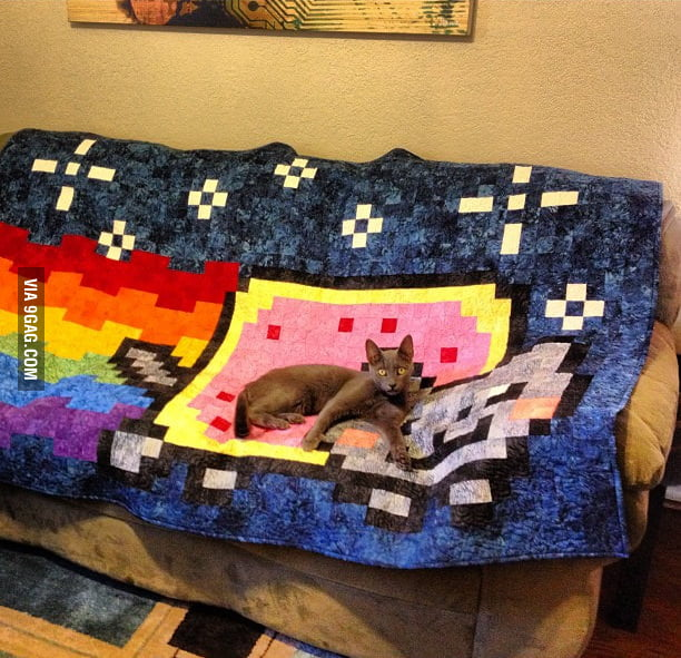 She wants to be the Nyan Cat.
