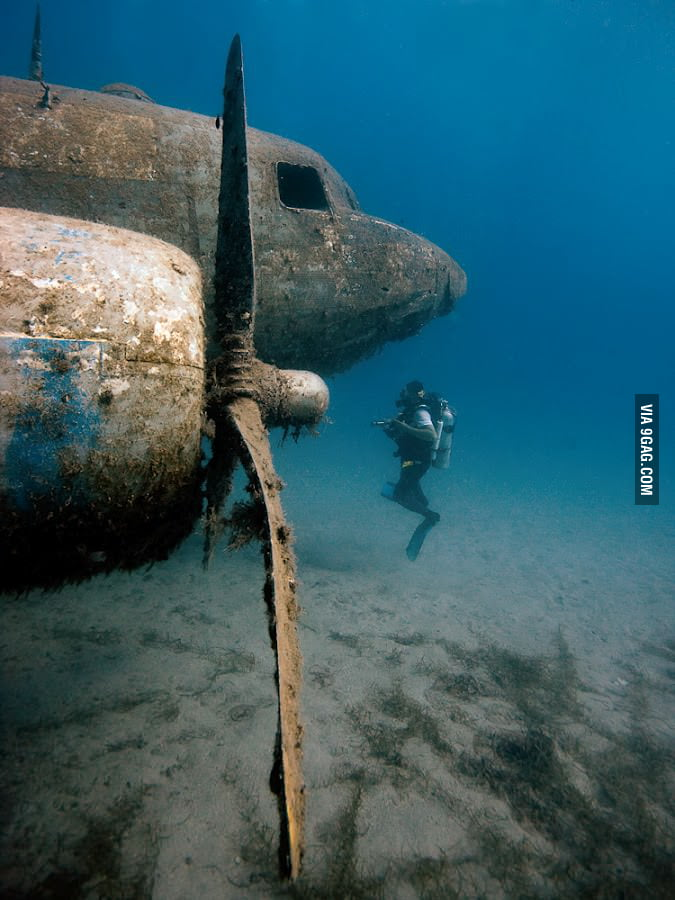 Plane, what are you doing under the sea?