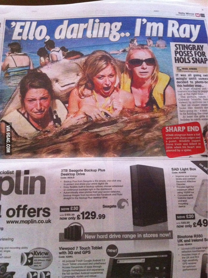 That picture of the stingray was in my local newspaper today