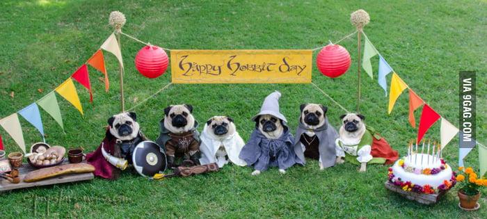 Happy Hobbit Day