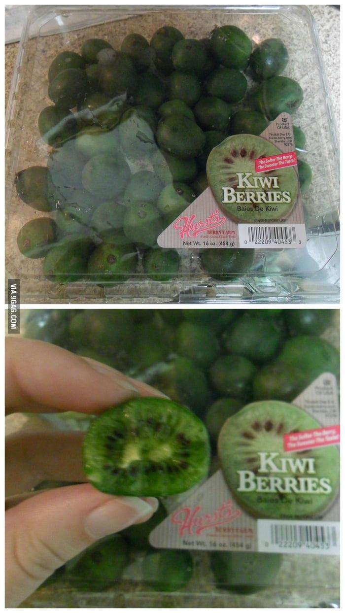 Kiwi x Berries = Kiwi Berries