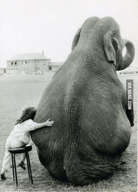 Have a hug