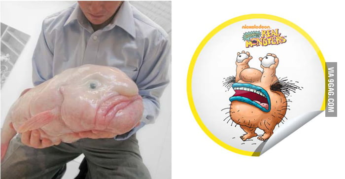 Blob fish porn