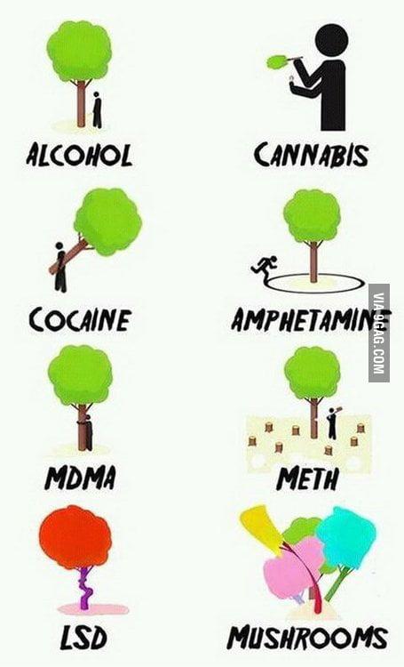Best way to understand drugs