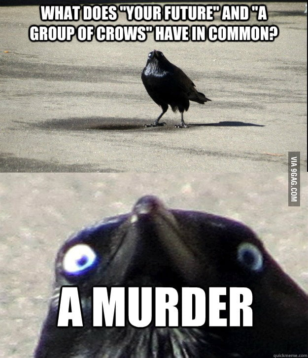 Insanity Crow predicts your future