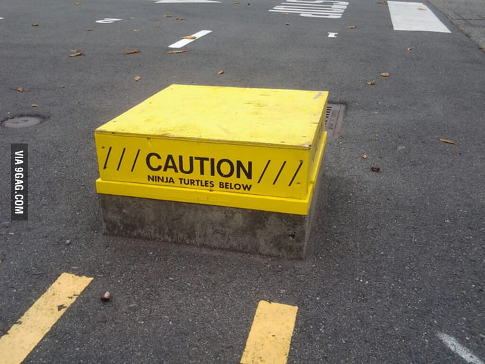 Caution: Ninja Turtles Below
