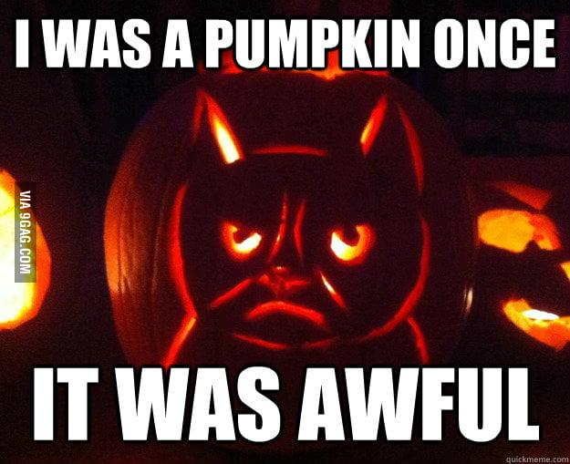 Grumpy cat celebrates Halloween