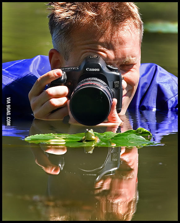 It needs a lot of hard work to take a good wildlife photo.