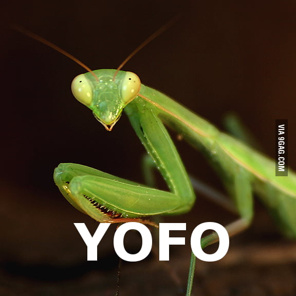 YOFO. If you know what I mean...