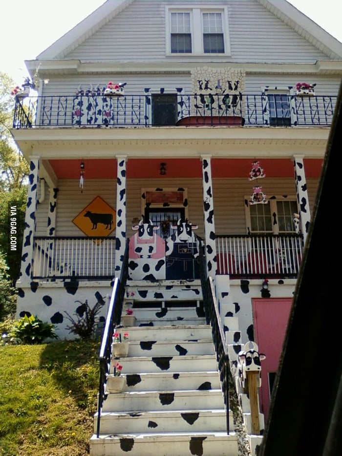 I think the house owner is a big fan of cow.