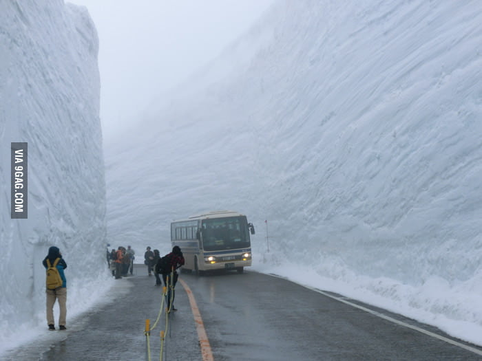 This is what a 60 foot snowfall clearing looks like.