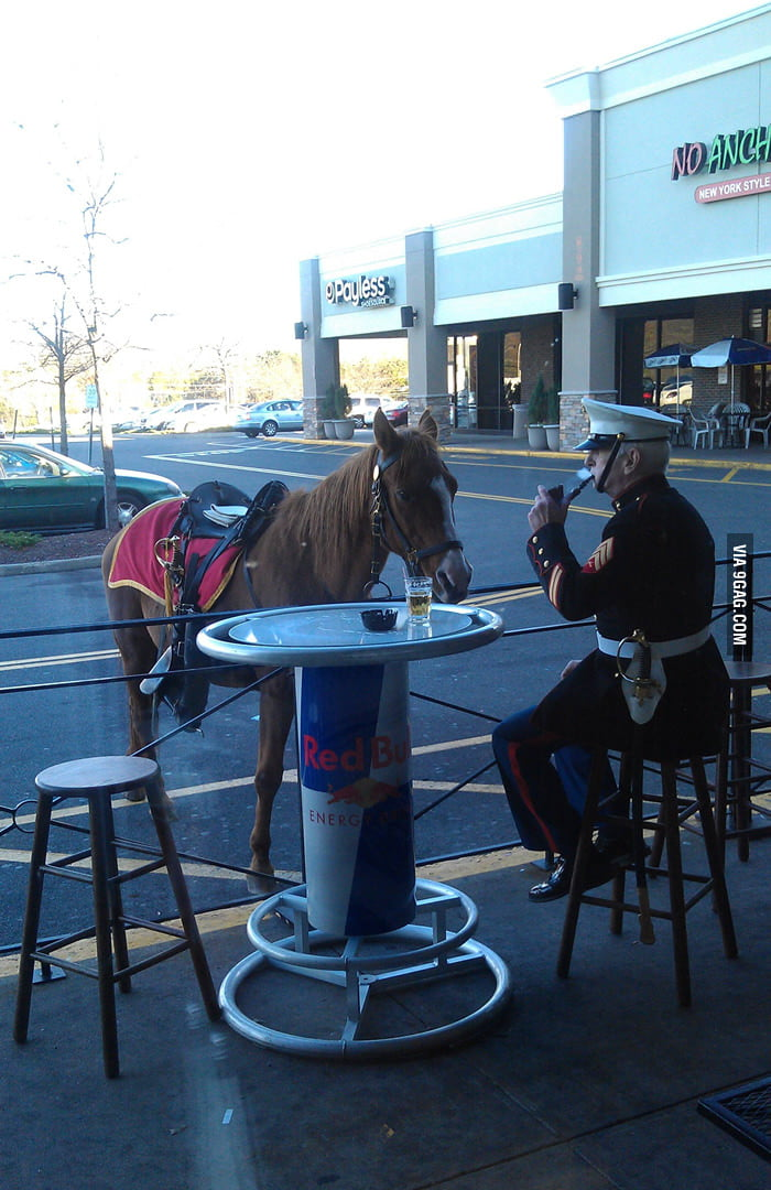 This gentleman showed up at the local bar yesterday.