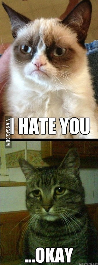 The love story of Grumpy Cat and Depressed Cat.