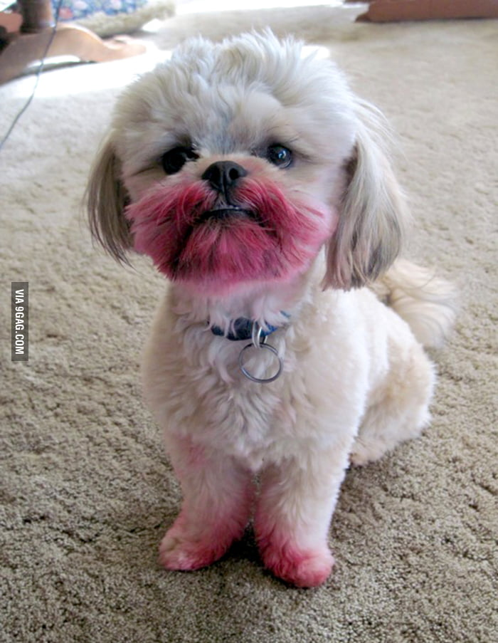 """I have not seen your lipstick."""