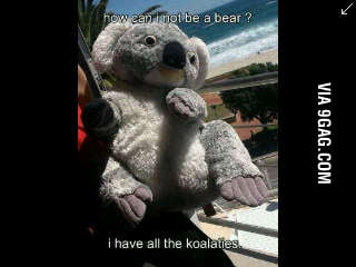 Koalaties