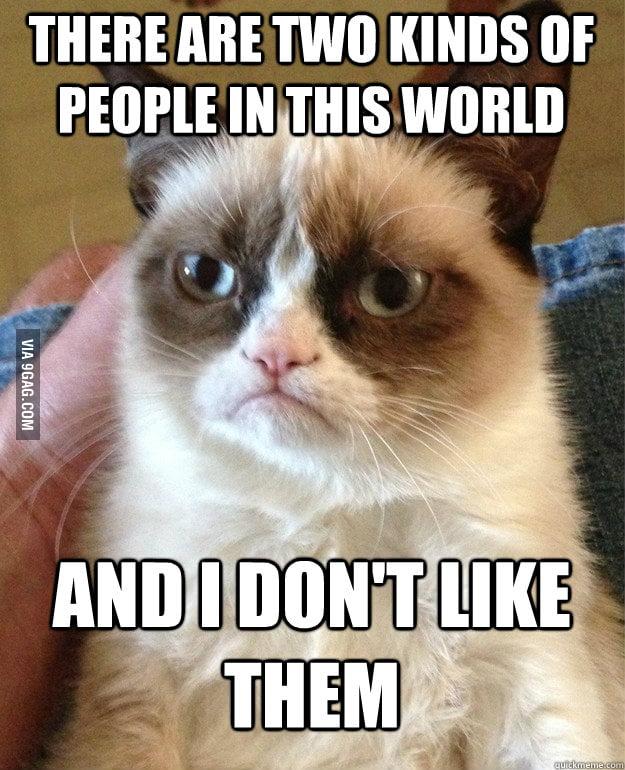 Grumpy cat is grumping again.