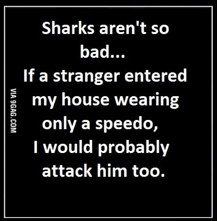 Sharks aren't that bad...