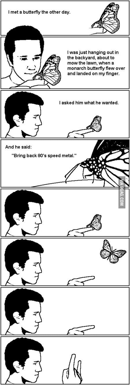 The Metal Butterfly