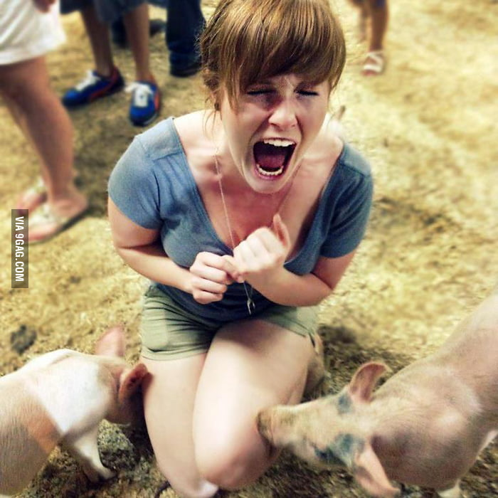 I guess she is scared of pigs
