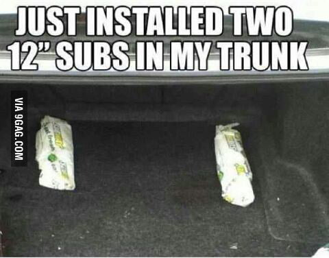 """Just installed two 12"""" subs in my trunk"""