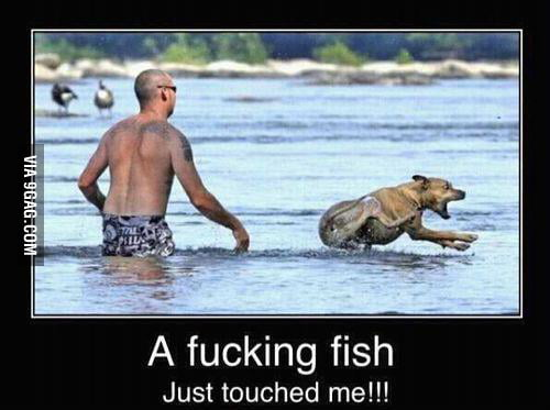 Aaaaahhhhhh a fish just touched me