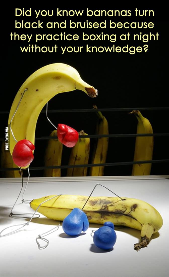 What bananas do at night.