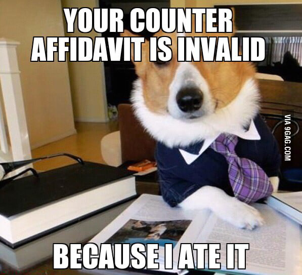 Lawyer Dog strikes