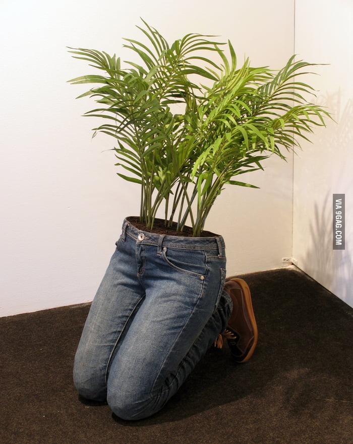 Plants in Pants.