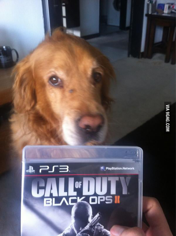 Finally called K-9 Unit on Call Of Duty Black Ops 2