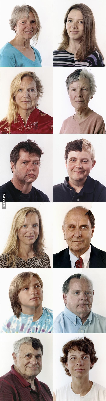 Genetics are amazing.