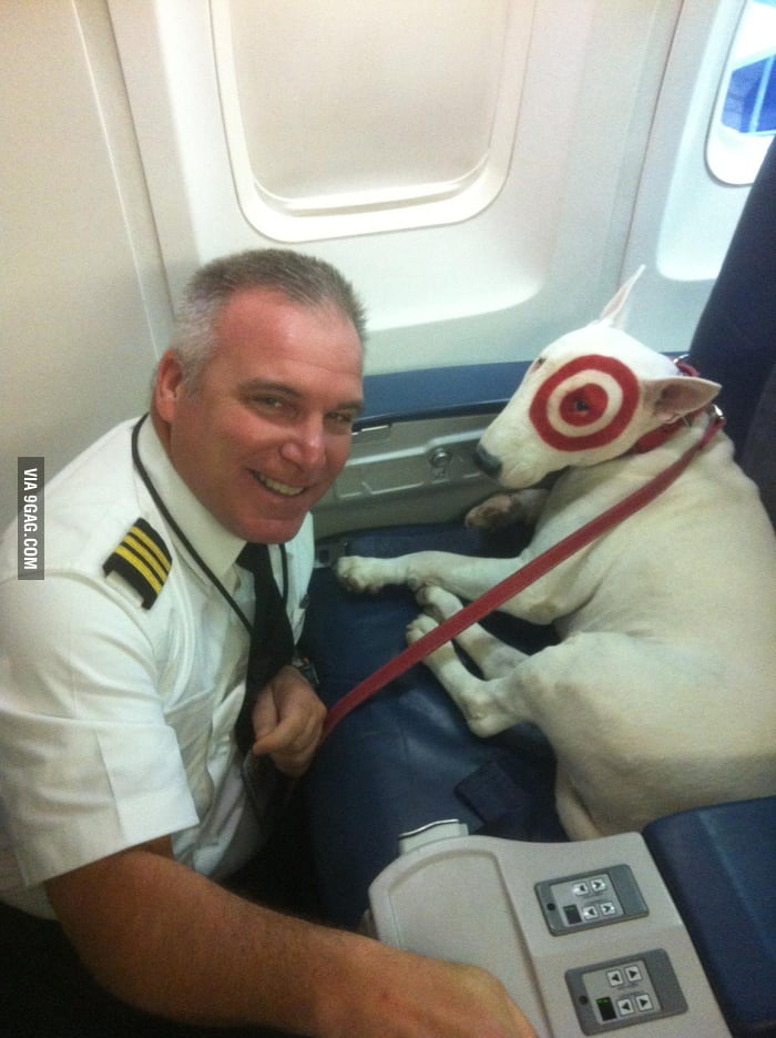 Met a celebrity on the plane.