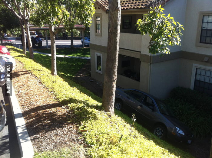 My neighbor was giving his kid a driving lesson.