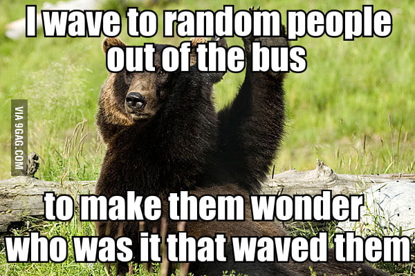 Confession bear and the public transportation