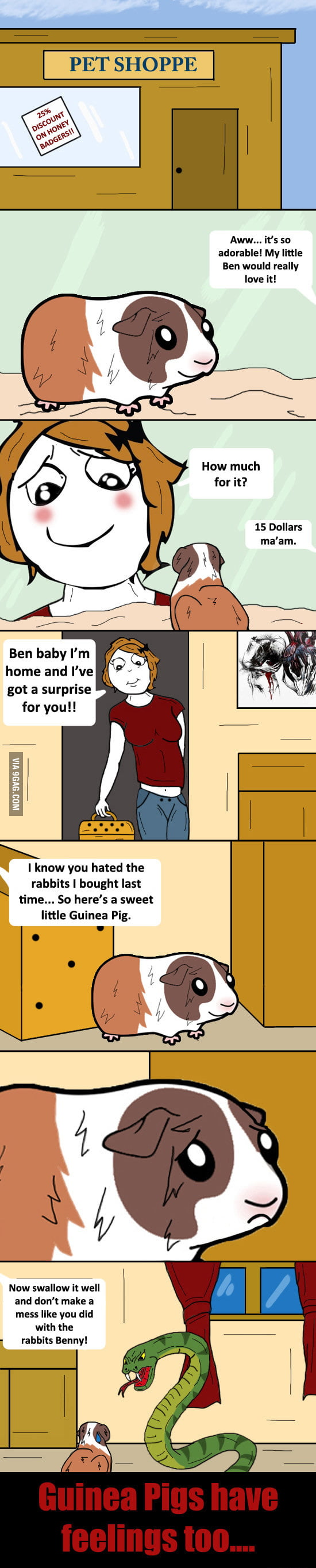 Guinea Pigs have feelings too