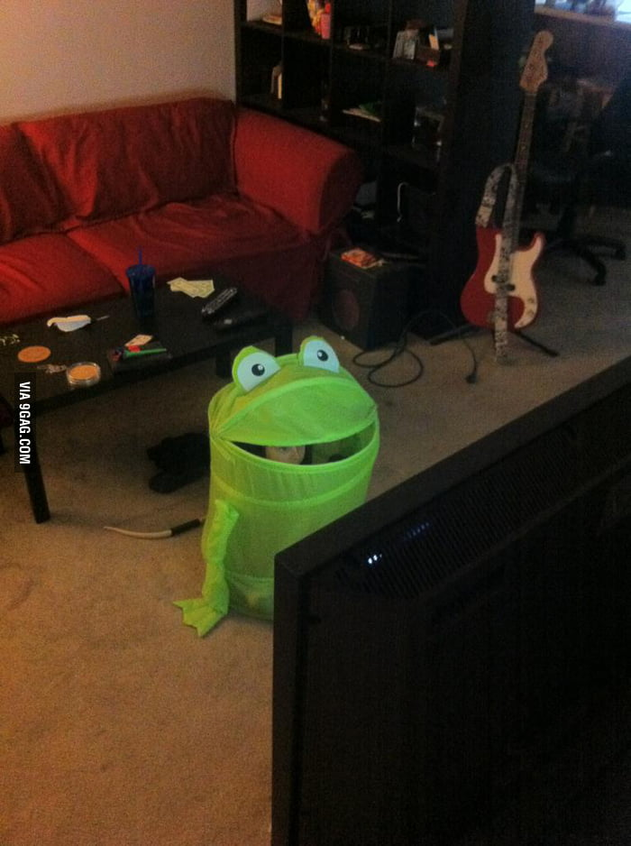 Playing video games like a frog!