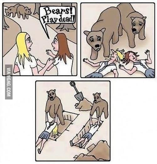 Good Guys Bears