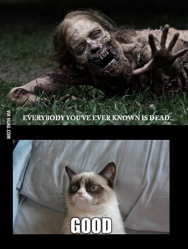 Me during the zombie apocalypse