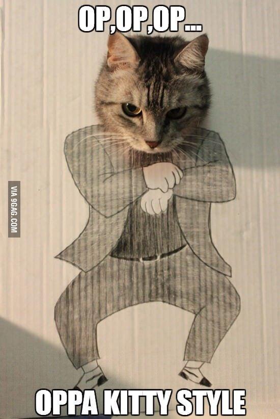 Oppan kitty style!