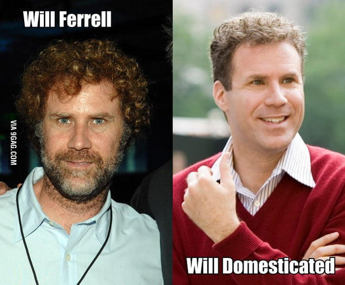 Will Ferrell and Will Domesticated