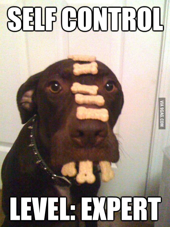 Self Control Expert
