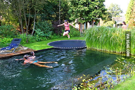 A pool disguised as a pond.