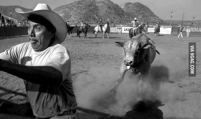 Run Cowboy Run!