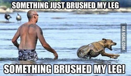 Happens every time I go to the beach
